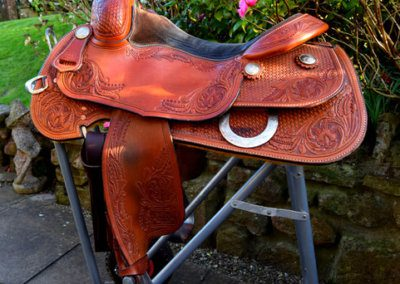Elite Custom Saddle
